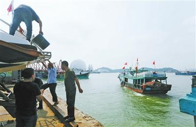 第二批渔船离港奔赴新家园 香洲渔港完成六十余载历史使命